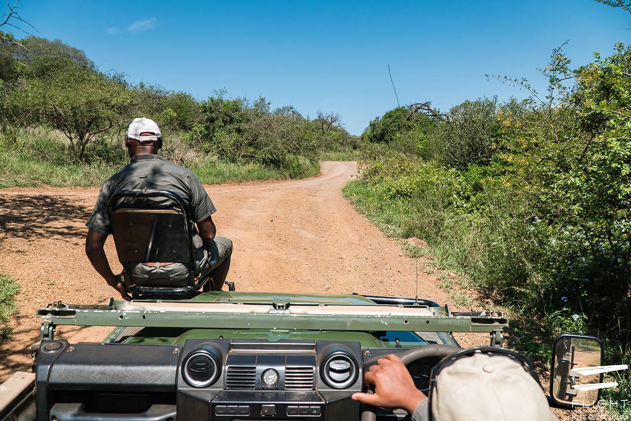 Game Drive at Thanda Game Reserve